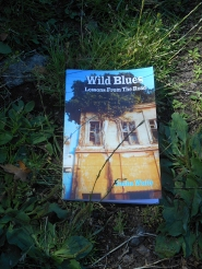 Wild Blues, by Tasha Waite, published by AwareNow Publishing (travel book on lessons learned hitchhiking)
